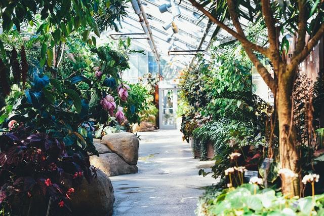 Entspannungsoase unter Pflanzen