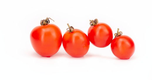 Tomaten Highlight