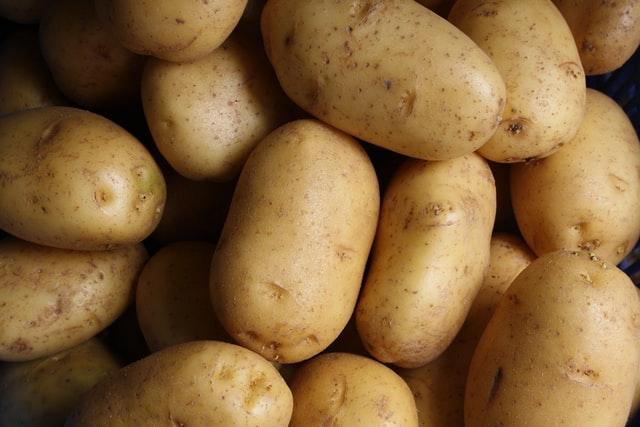 Kartoffeln im Hochbeet