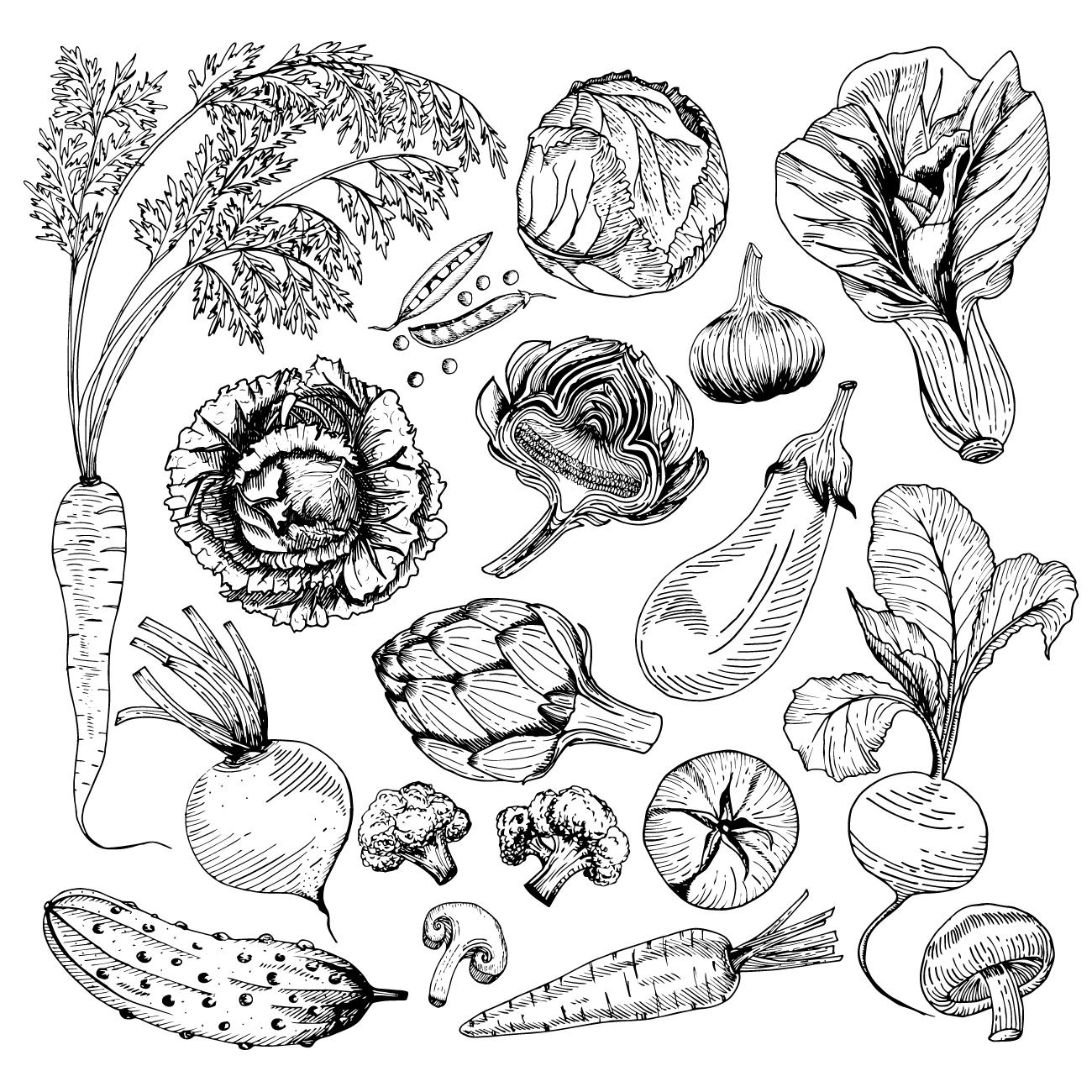 Hochbeet Pflanzen