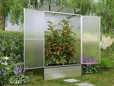 Tomatenhäuser